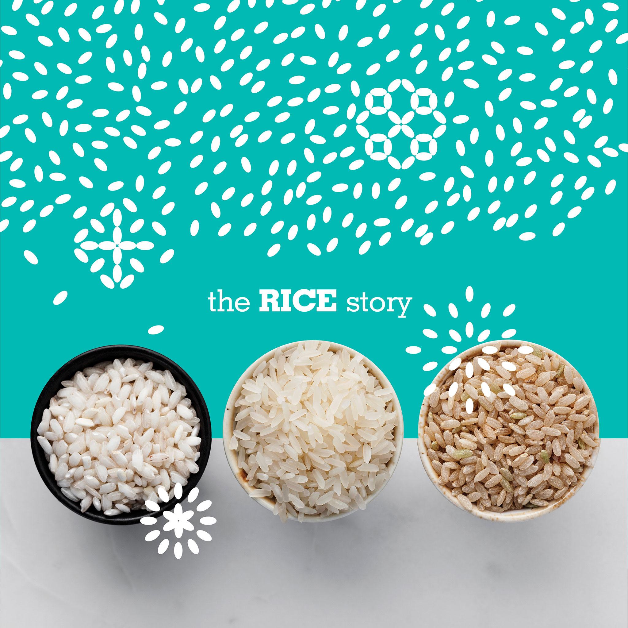 thiet ke nha hang Rice Deli